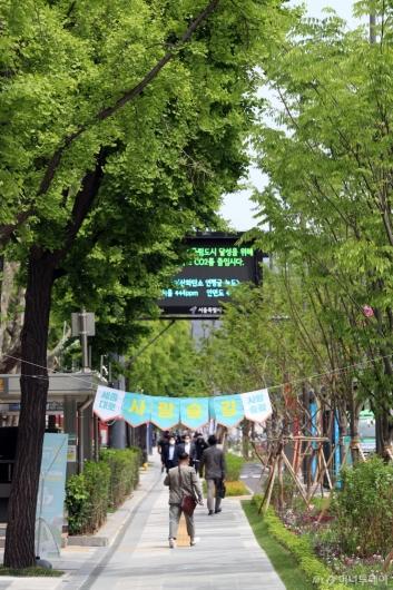 [사진]완공된 '세종대로 사람숲길'