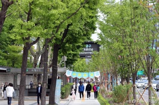 [사진]보행공간 확대한 '세종대로 사람숲길'
