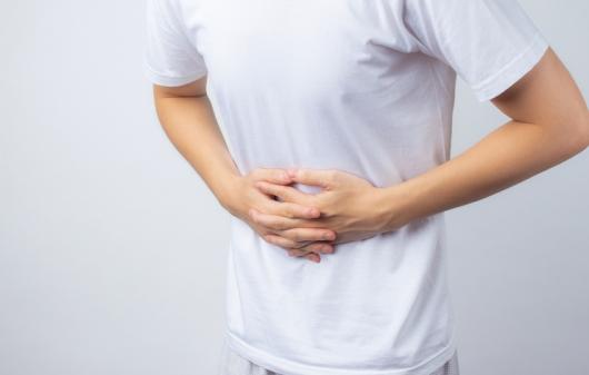 분당김밥집 식중독 증상 199명…살모넬라 검출