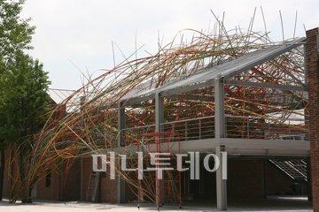 ↑2009년 인천 여성비엔날레에 출품된 마작가 대나무 설치작 전경