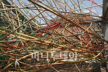 ↑ 2009년 인천여성 비엔날레 마작가 출품 대나무 설치작.