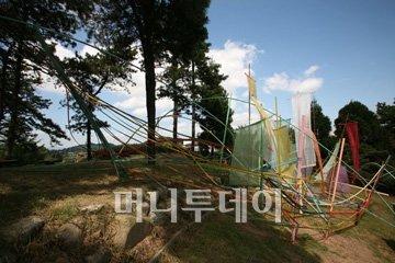 ↑2006년 광주비엔날레에 출품한 마작가 대나무 설치작