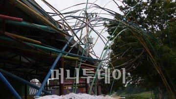 ↑ 2007년 담양 예술제 출품한 마 작가의 대나무 설치작.