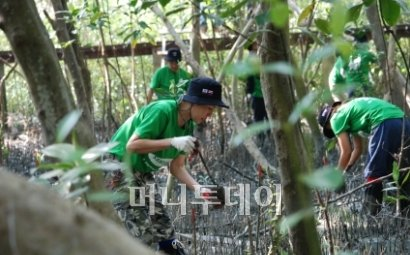 삼성생명,태국서 희망나무 '망그로브' 심기