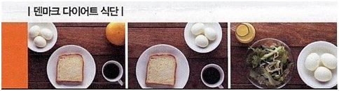 단백질 다이어트의 종류별 비교