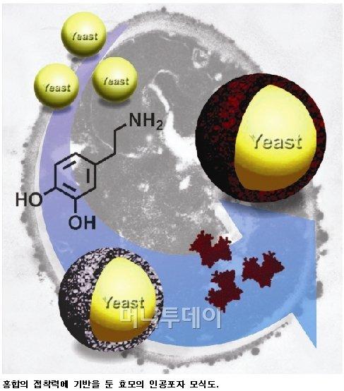 KAIST, 질병 위험물질 진단 바이오센서 개발