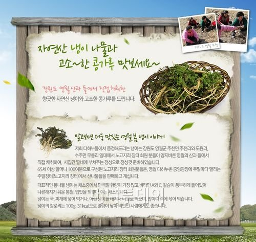 영월 '노고지리' 장터의 자연산 냉이와 콩가루 선물