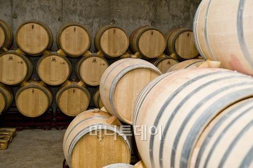 스페인산 최고급 와인의 격조 높은 테이스트 첫 선보여