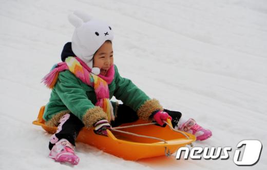 [사진]눈썰매 타는 어린토끼