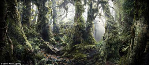 14마리 숨은 동물그림찾기, 당신의 환경 지수는?
