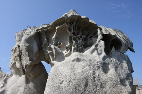 염풍화가 우세한 해안에서 암석 측면에 형성돼 있는 해안 타포니로 강릉 소돌해안에 있다. News1<br /> <br />