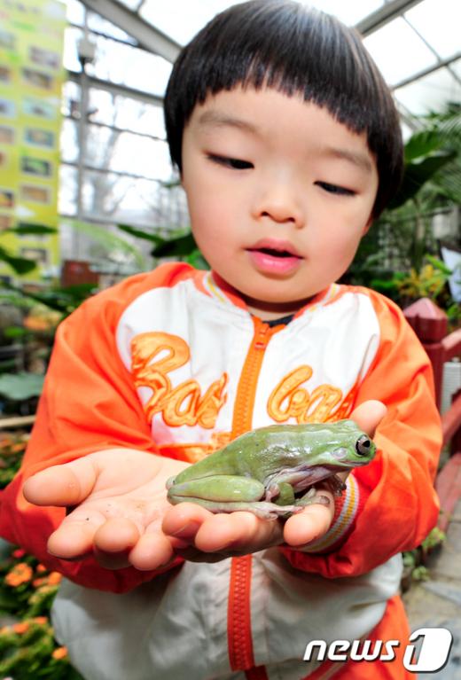 [사진]개구리야 만나서 반가워!