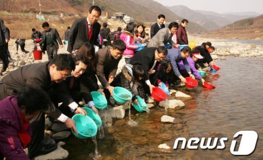 14일 전남 구례군 섬진강변 여울목에서 어린연어가 방류되고 있다./사진제공=구례군 News1