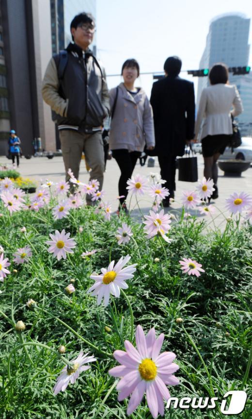 [사진]포근한 낮, 봄기운 물씬
