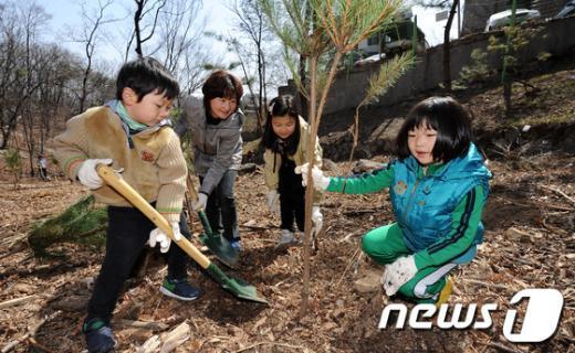 [사진]조선왕릉 나무심기 체험하는 시민들