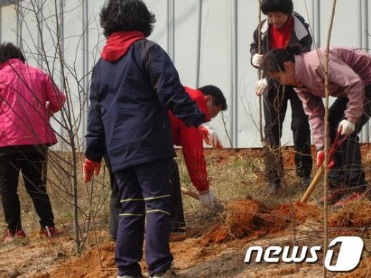 새누리당 인천시당 당직자들이 4일 인천 운남지구 인근에서 '희망의 나무심기'식목행사를 진행하고 있다. News1