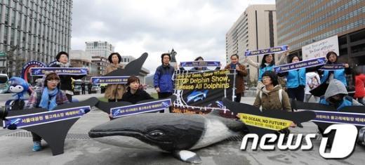 [사진]돌고래를 바다로