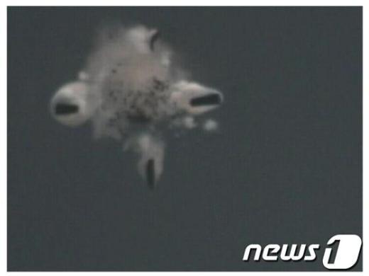 비행중 자탄이 분리되는 순항미사일.  News1