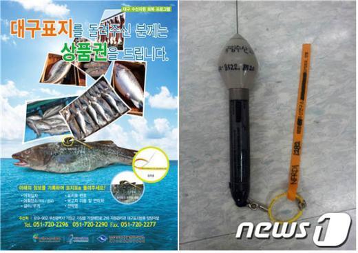 사진제공=국립수산과학원 News1