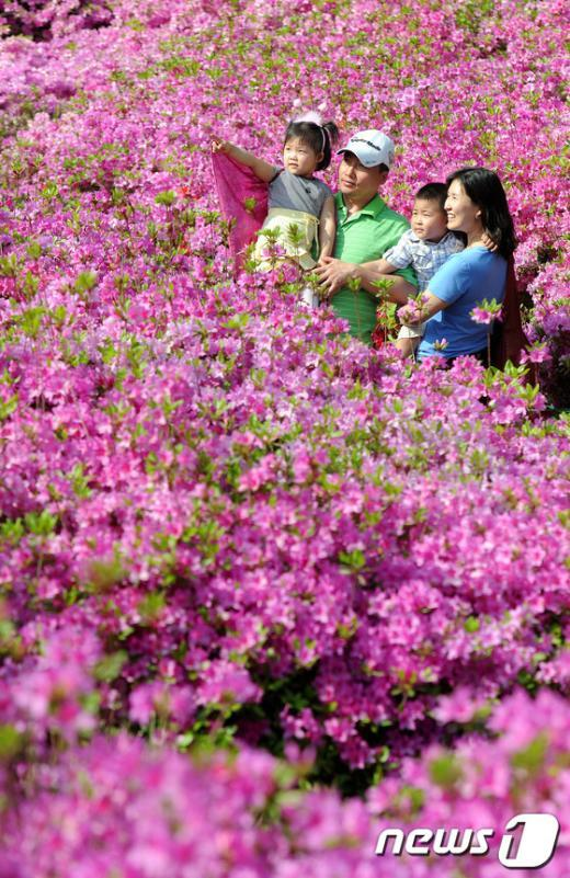 [사진]철쭉축제 즐기는 가족