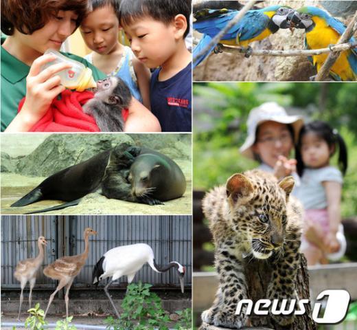 [사진]서울동물원, 자연생태동물원으로 변신 후 멸종위기종 탄생