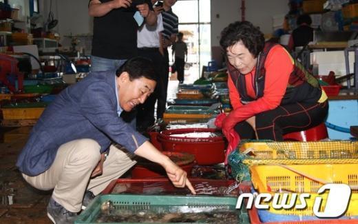 [사진]수산물 시장 방문한 이재오 의원