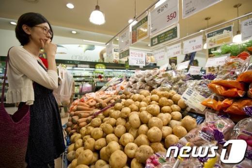 [사진]당황스런 채소 가격 폭등