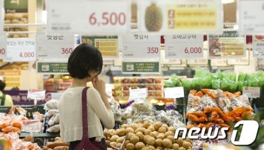 [사진]고민되는 채소가격 폭등