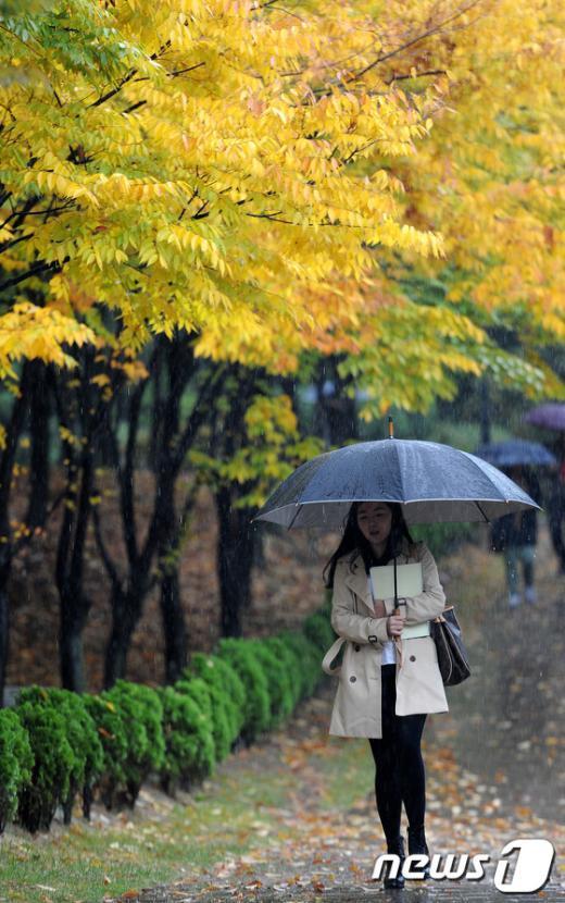 [사진]'가을비 내리는 날'