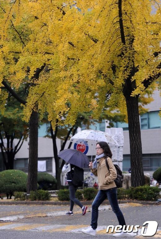 [사진]'노랗게 물든 가을'