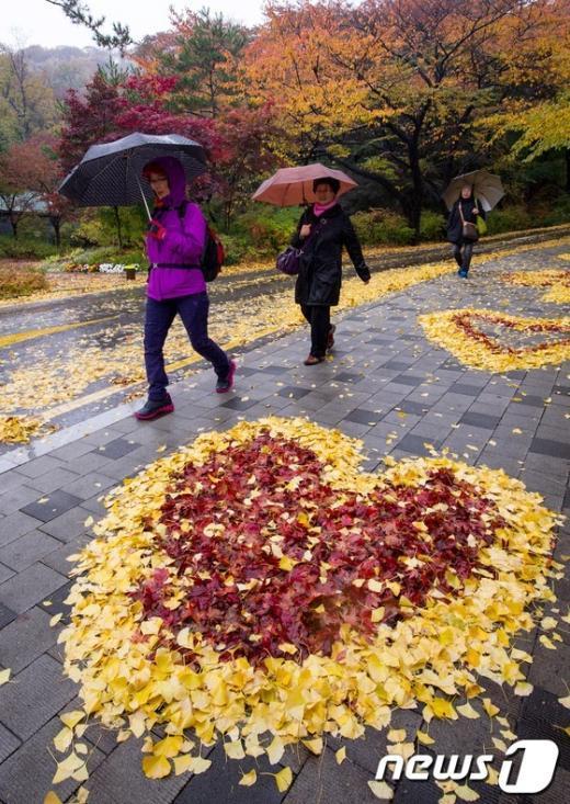[사진]'비오는 가을 오후'