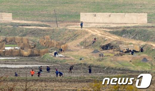 [사진]밭일 하는 북한 주민들