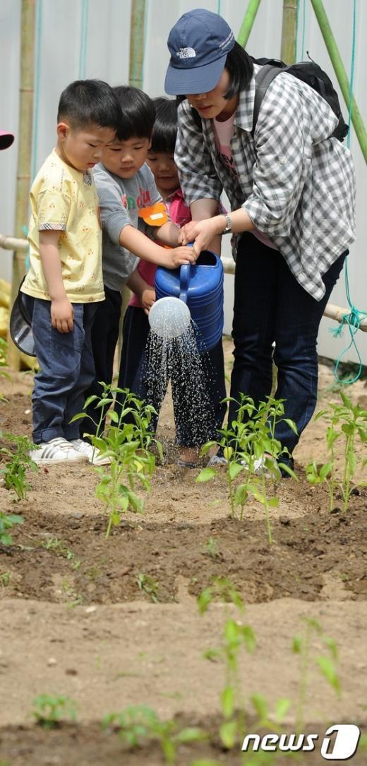 [사진]모종에 물주는 어린이들