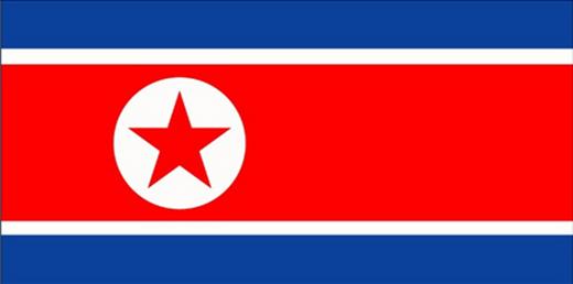 북한 국기/사진=온라인 블로그