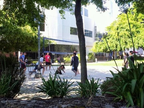 점심시간을 이용해 배구를 하고 있는 구글 직원들. /마운틴뷰=유병률기자