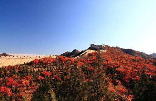 바다링창청, 가을로 물들다