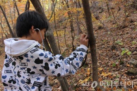 한 어린이가 청진기로 나무의 숨쉬는 소리를 듣고 있다./사진=박정웅 기자