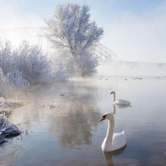 겨울 비경