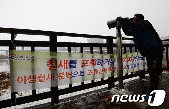 [사진]AI 주범 철새 몰려드는 지역 비상
