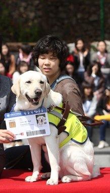 지난 2010년 4월 세계안내견의 날을 맞아 숙명여대에서 윤서향 학생의 안내견 루시에게 명예학생증을 수여한 뒤 기념사진을 찍고 있다.(숙명여대 제공)  © News1