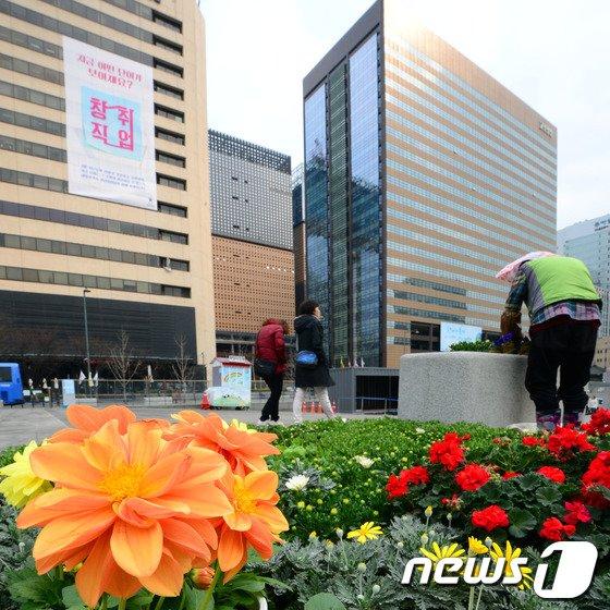 [사진]봄맞이하는 광화문광장