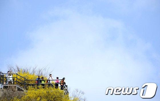 [사진]봄날씨 만끽하는 시민들
