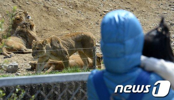 [사진]재개장한 서울동물원