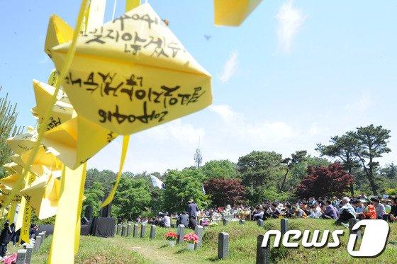 [사진]구묘역에 휘날리는 세월호 추모리본