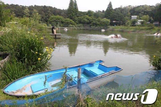 [사진]금수원 내부의 메기 양식장