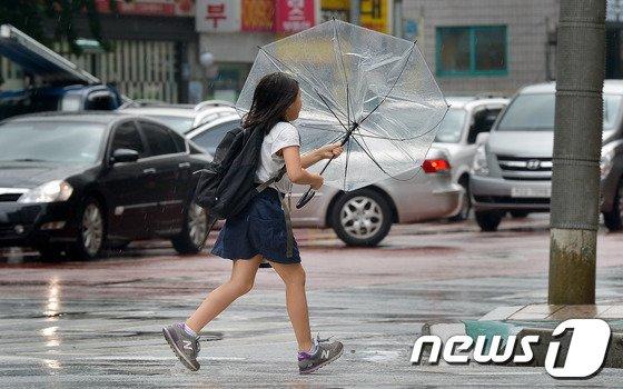 [사진]아이코 내 우산!