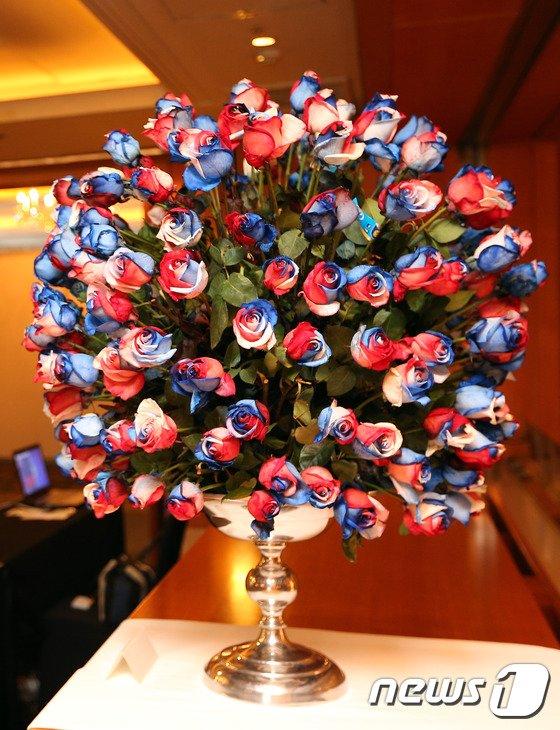 [사진][교황 방한] '장미의 나라' 에콰도르에서 온 장미