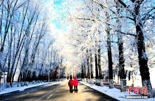 中 헤이룽장 다싱안링의 수 킬로미터에 이르는 눈꽃길