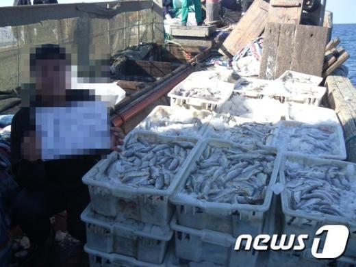 [사진]서해해경청, 불법조업 중국어선 11척 나포