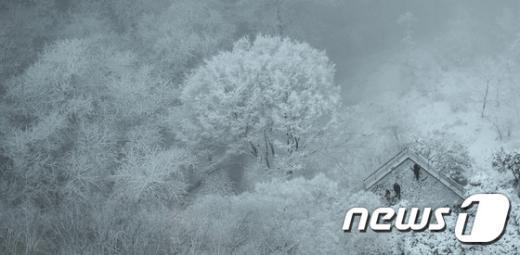 [사진]겨울 왕국?